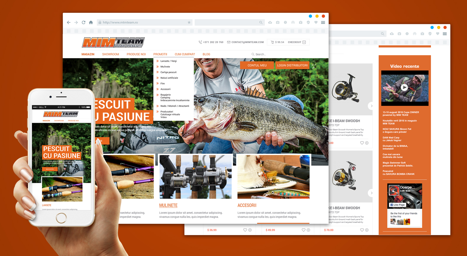 tudor_deleanu_creative_design_art_advertising_web_website__0001_mtmteam