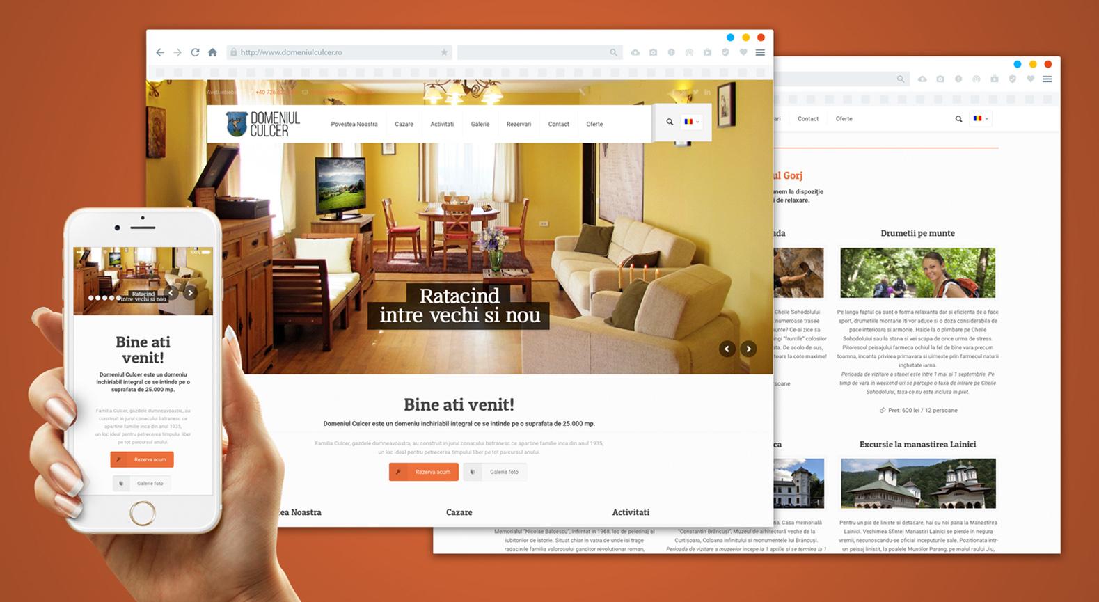 tudor_deleanu_creative_design_art_advertising_web_website__0012_Domeniul Culcer